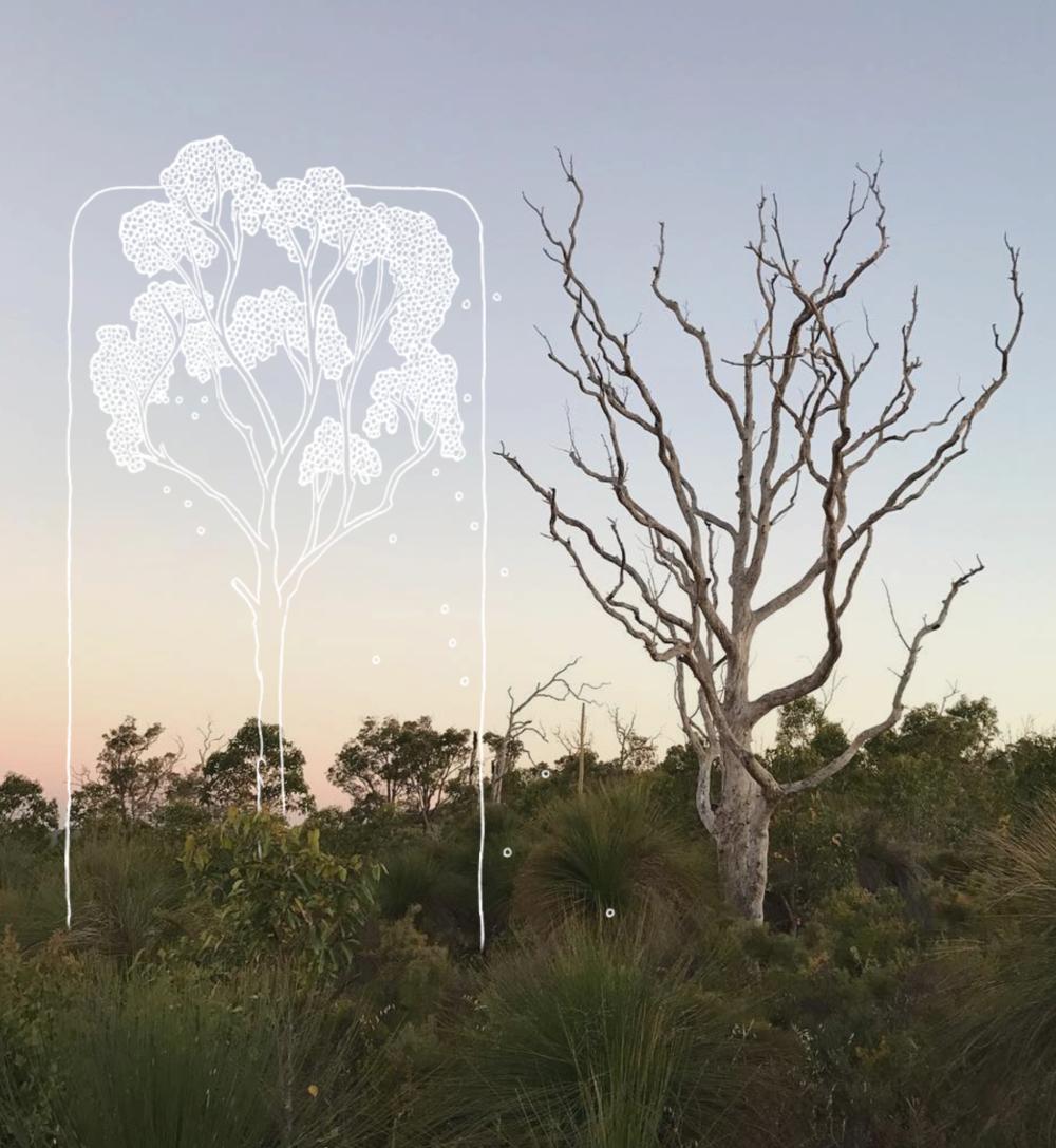tree ghost
