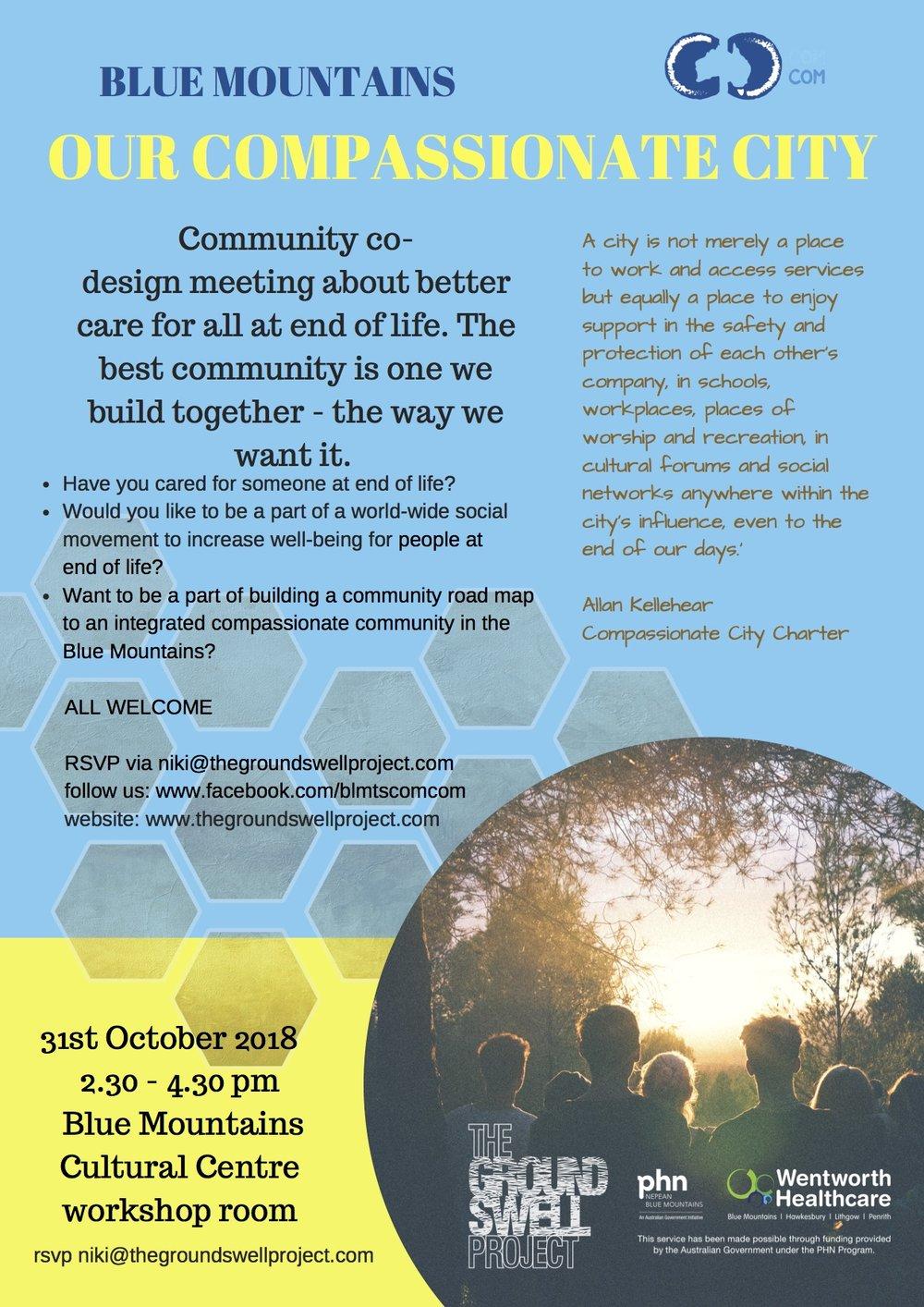 community co-design meeting 31 oct.jpg