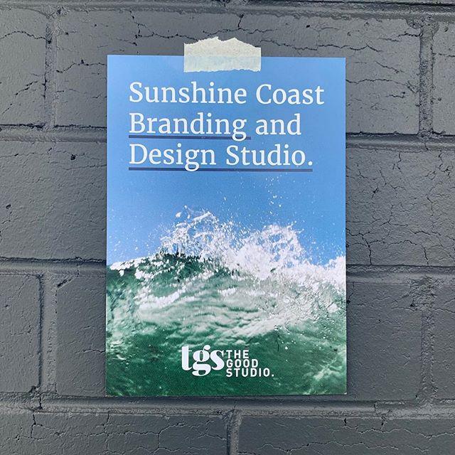 Sunshine Coast Branding and Design Studio 🌴