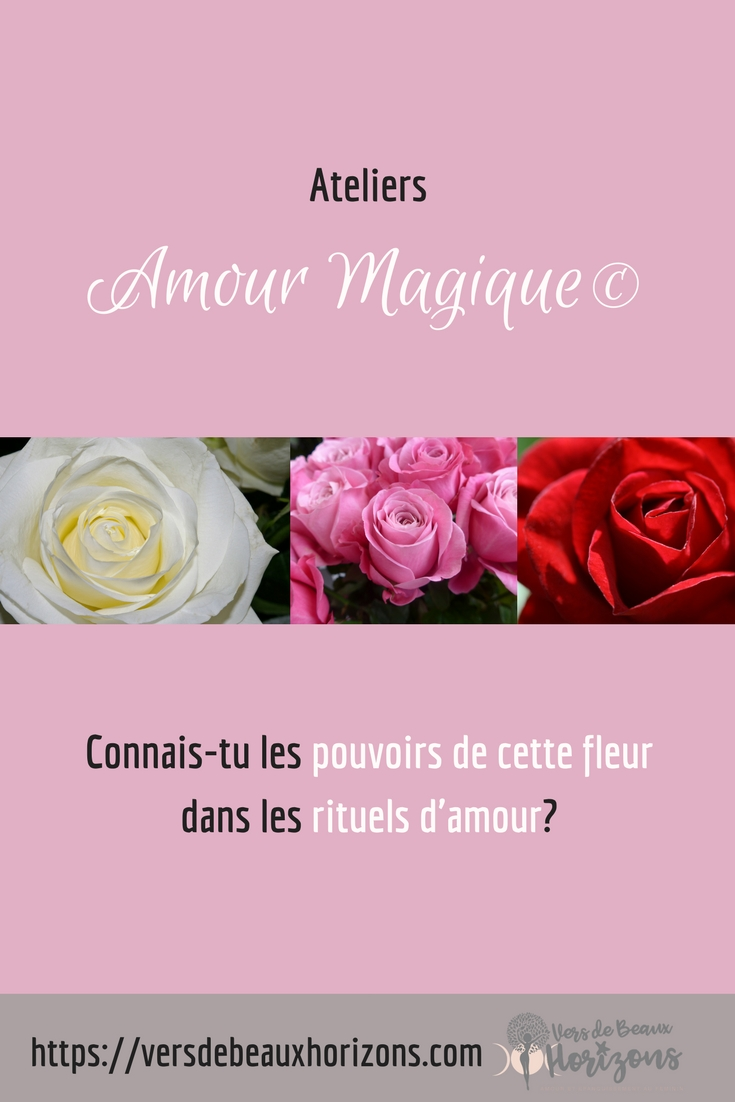 AM_pouvoirdesroses_question_Pinterest.jpg