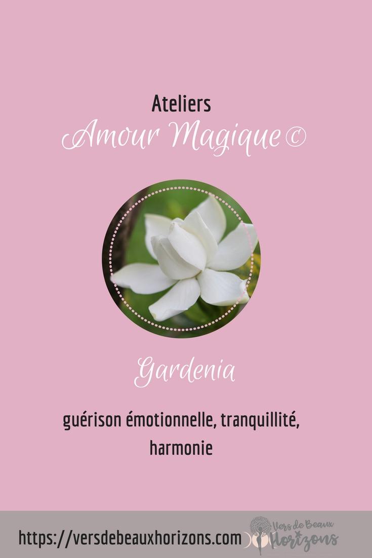 Gardenia_Pinterest.jpg