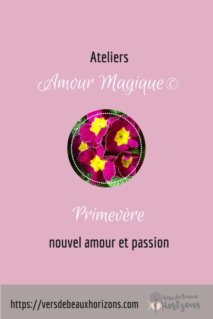 Primevère_Pinterest.jpg