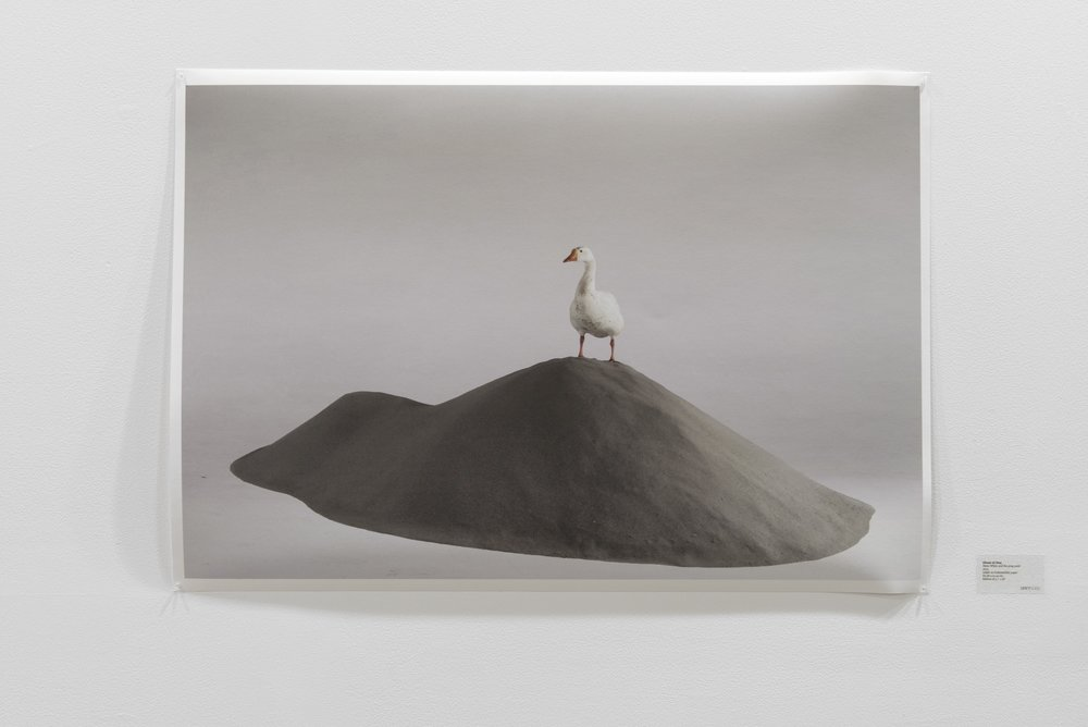 Ehsan ul Haq  Snow White and the grey sand 2013 inkjet on Hahnemühle paper 60.96 x 91.44 cm Edition of 3 + 1 AP.