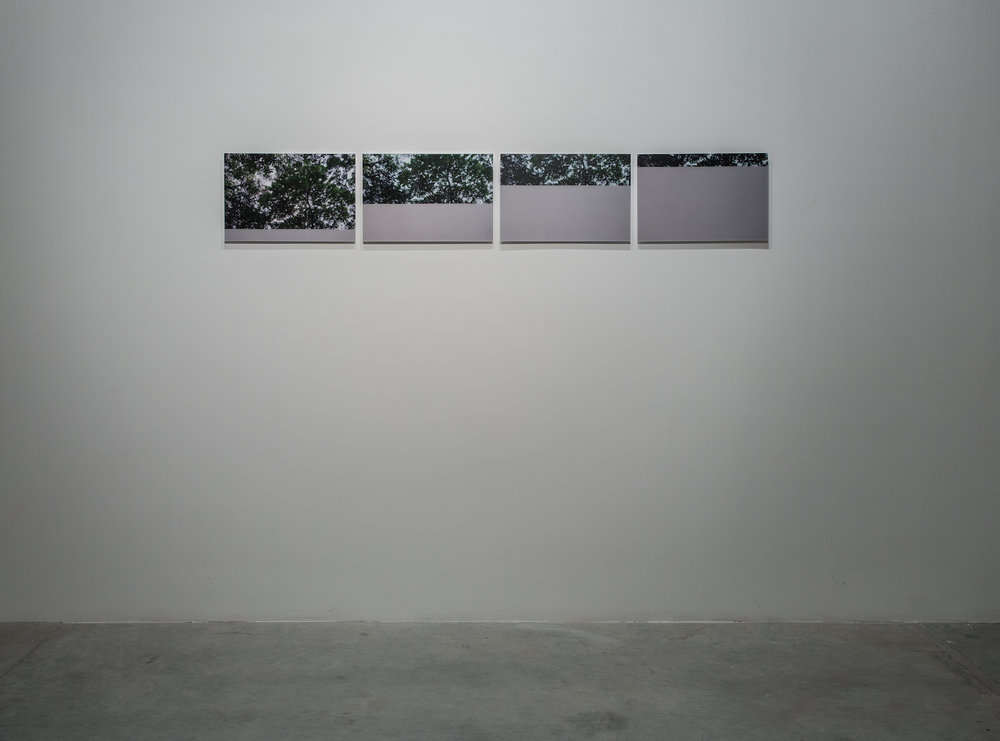 Interruptions 2 (set of 4) 2014 C-type prints, diasec. 30.48 x 45.72 cm each Edition 5 + 2AP