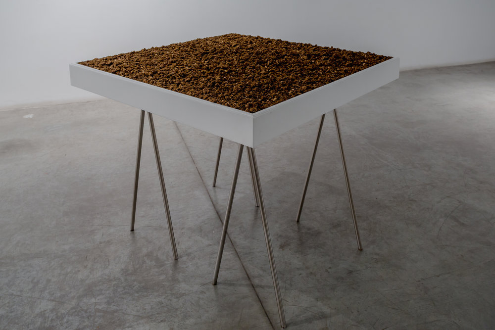 1m2 of Lebanese land finally liberated from this shitty situation 2016 Lebanese soil, metallic legs, wooden plinth, plexi-glass cover  104 x 104 x 103 cm   /  1m2 of Lebanese soil was transported out of the country.