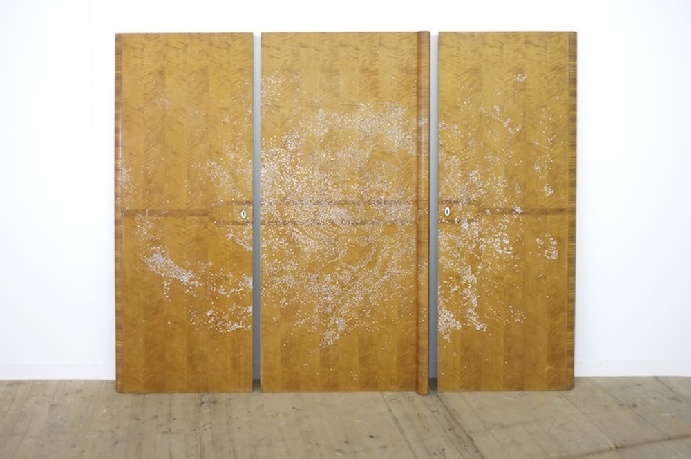 Michael John Whelan  Everyone you ever heard of 2013 Cubic Zirconias (diamond simulants) on vintage wooden wardrobe doors 165 x 190 cm