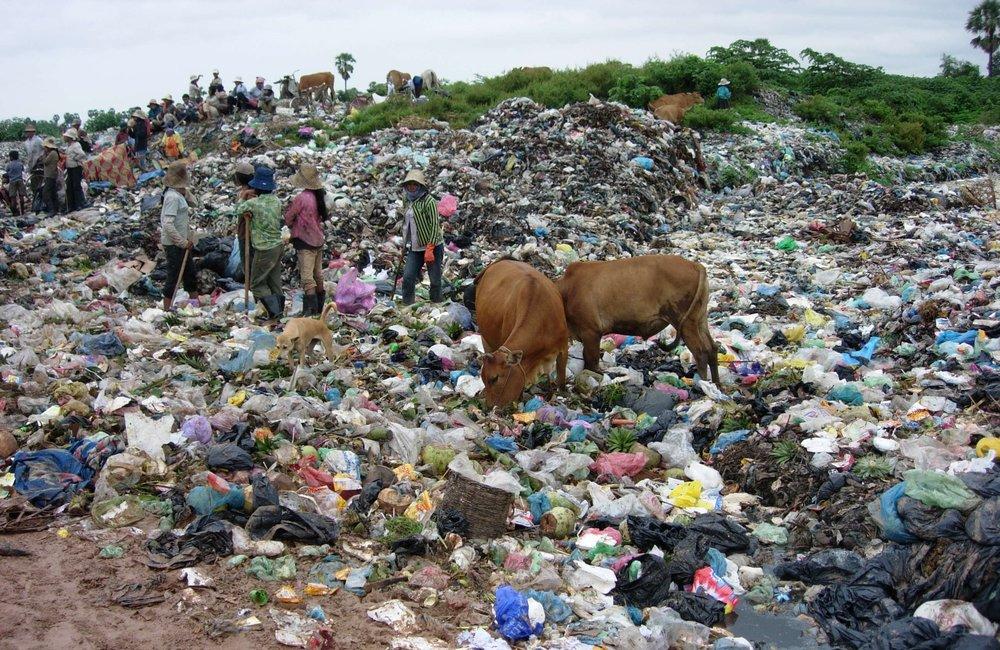 Landfill Organics