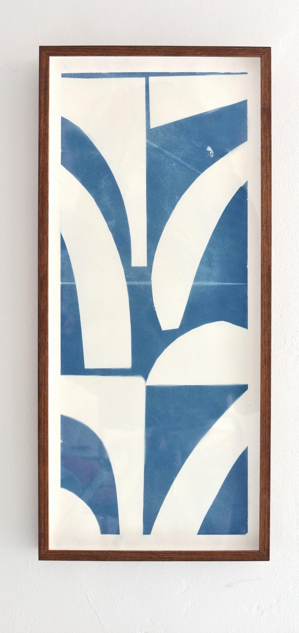 Cyanotype,20 x 65 cm
