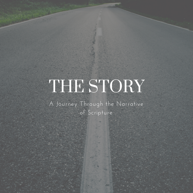 The Story - A Bible-study curriculum designed to teach the narrative of scripture and geared toward the secular/ post-modern seeker. Coming Soon. (Subscribe to the Newsletter to be the first to know when it becomes available)