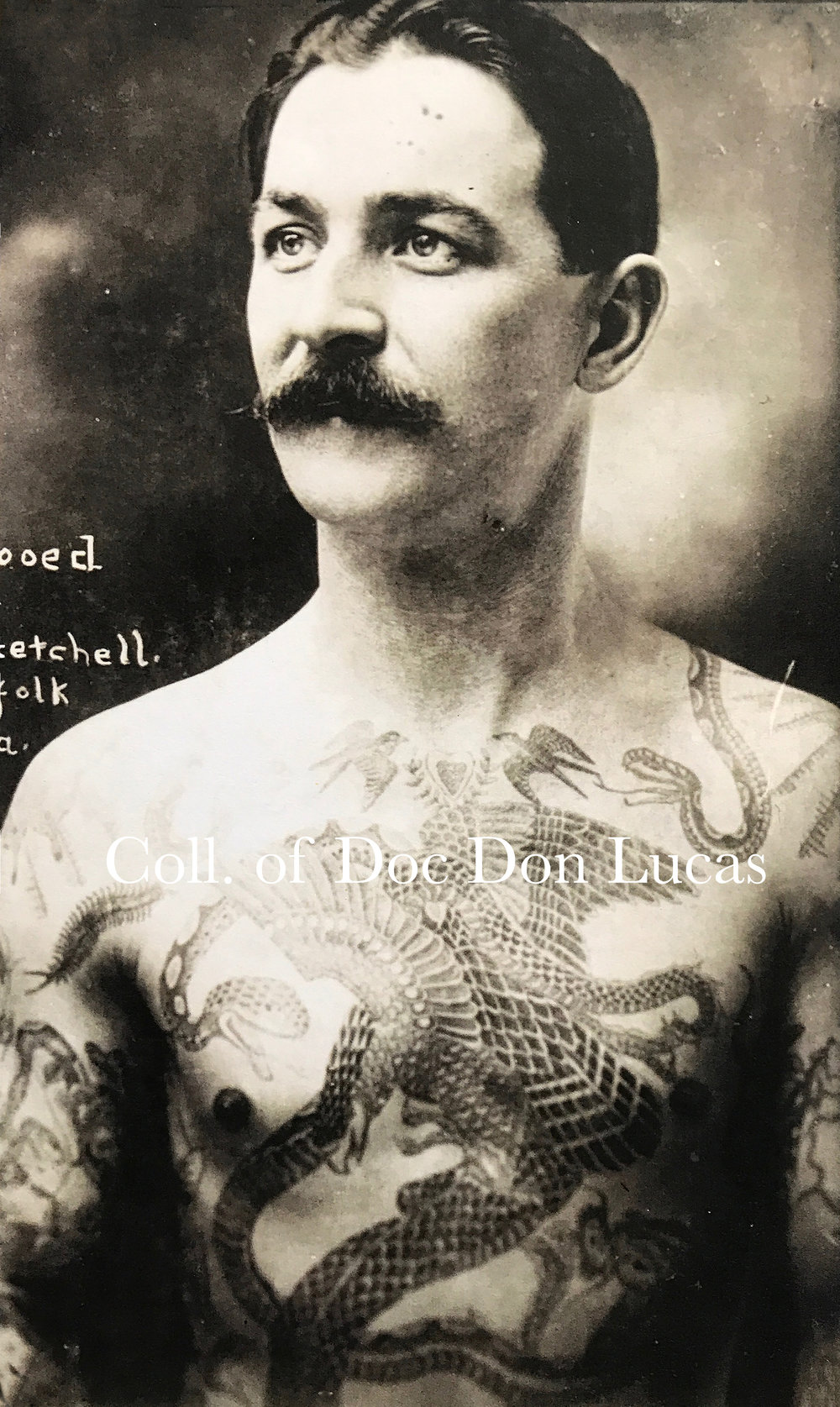 """""""Tattooed by Prof. Getchell, Norfolk, Va.,"""" Photograph Duplicated from a Cabinet Card by William Ettlin, 17 Chatham Square, ca. 1904.  Courtesy of Doc Don Lucas"""