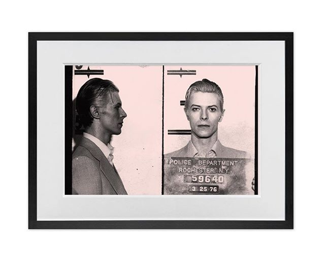 """'Mugshot """"Bowie""""' by Claridge Fine Art Studio 📸⠀ .⠀⠀⠀ .⠀⠀⠀ .⠀⠀⠀ .⠀⠀⠀ .⠀⠀⠀ .⠀⠀⠀ .⠀⠀⠀ .⠀⠀⠀ .⠀⠀⠀ #claridgefineart #bowie #davidbowie #mugshot #winchester #art #artist #gallery #claridgefineart #artgallery #winchesteruk"""