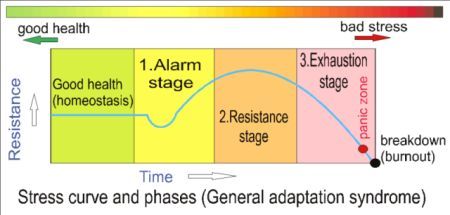 Stress curve and phases 3.jpg