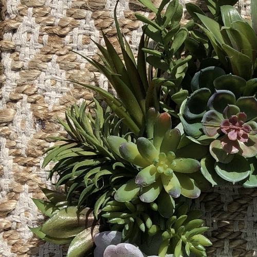 wreath with succulents.JPG