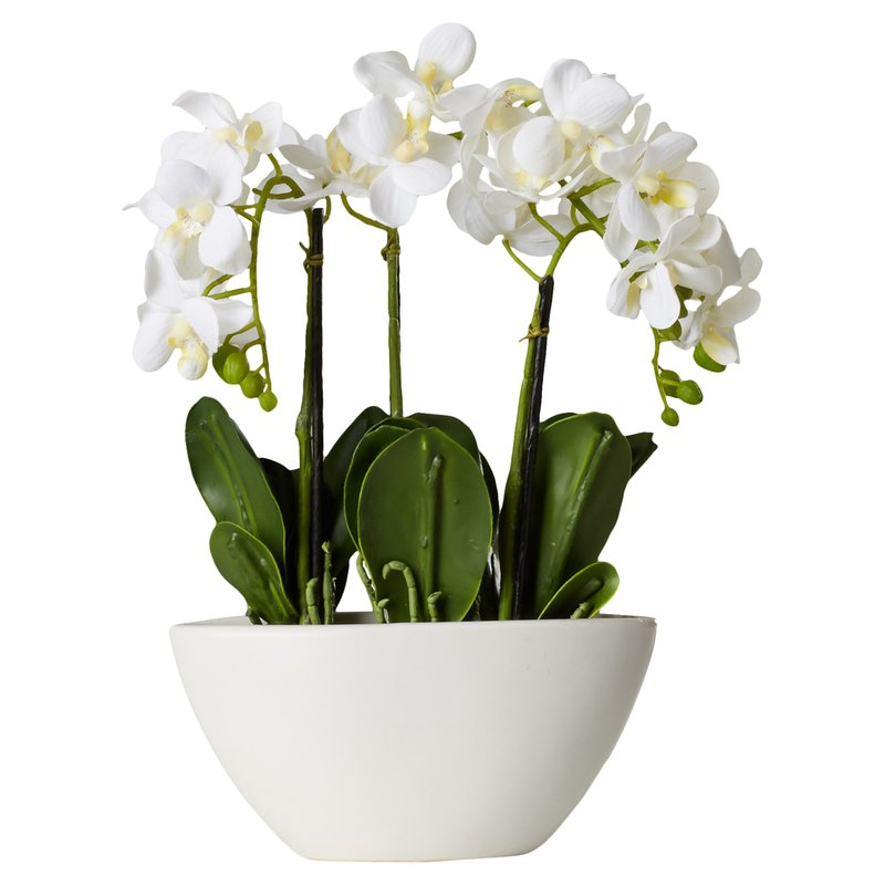 Phalaenopsis+Silk+Flowers+in+Pot.jpg