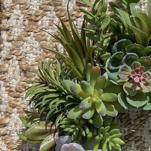 Dollar Store Crafts | Succulent Wreaths, Five Ways - Tutorials for creating these Faux Succulent Home Decor Accents. #succulent #diy #dollarstorediy