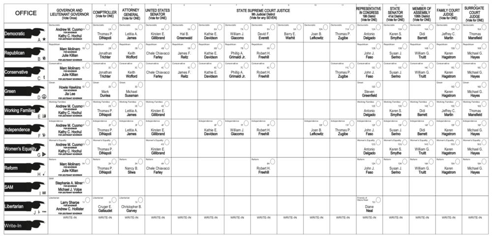2018 Sample ballot in Dutchess County.