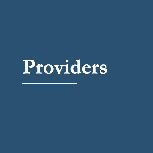 Providers_block.png
