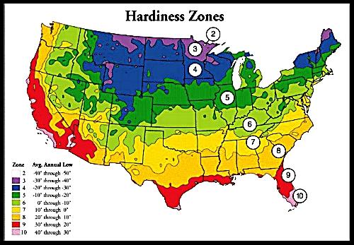 Hardiness_zones.jpg