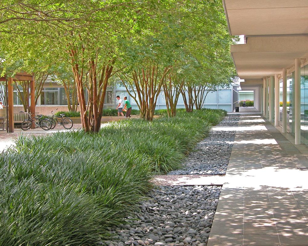 BMC Software Campus - Houston TX
