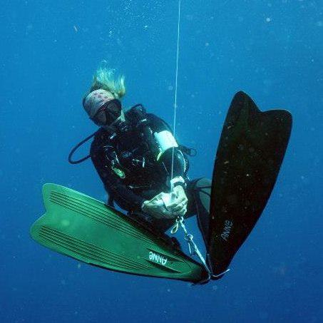Anne diving.jpg