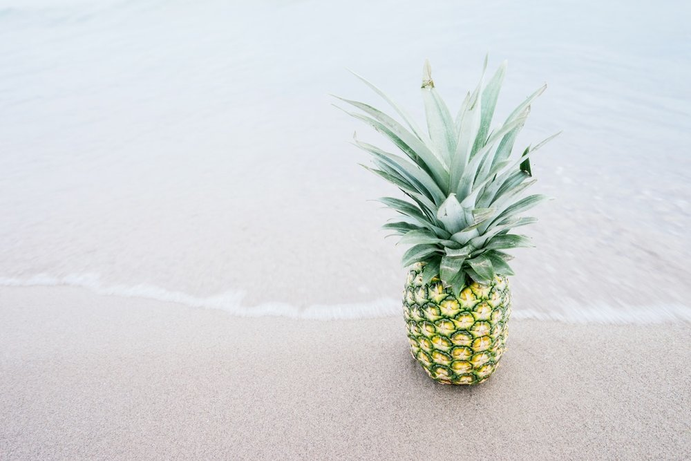 Pineapple Jupiter FL.jpg