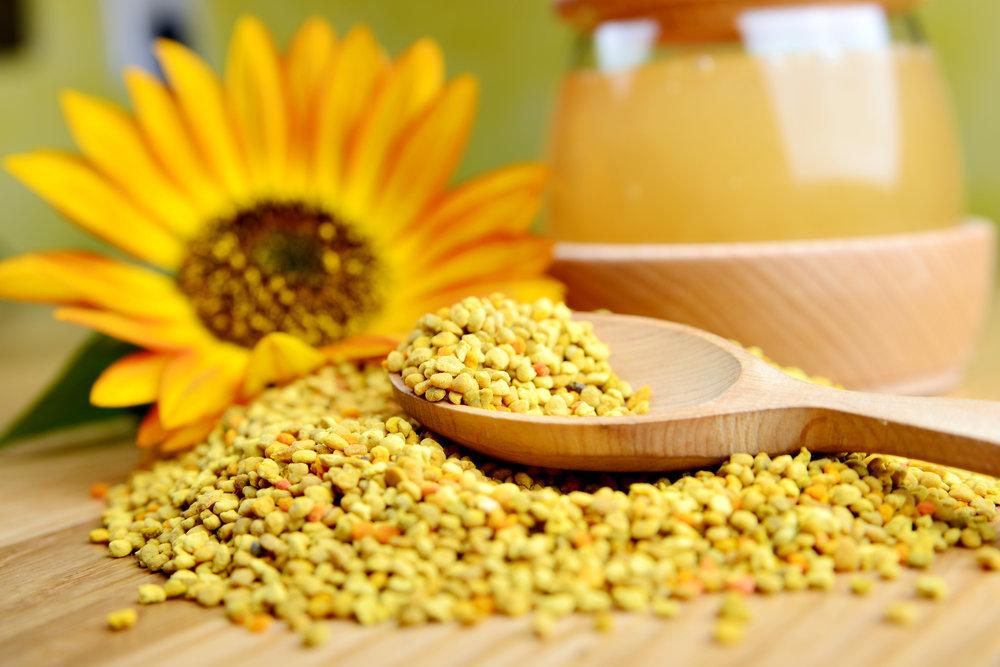 Sundance Pollen Traps -