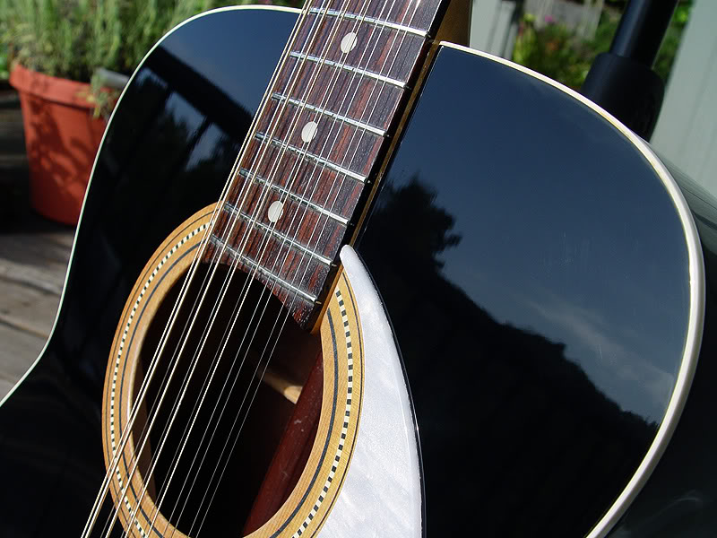 DETAIL OF TOP SHOWING PICKGUARD