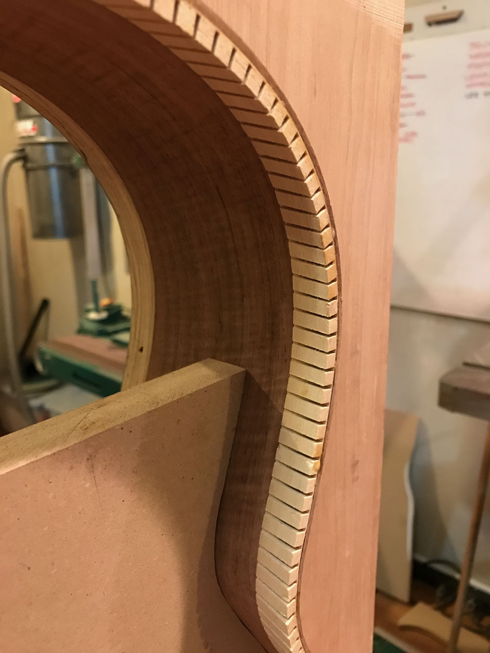 THE CLASSICAL BODY IN CLOSEUP. THE LININGS HAVE BEEN GLUED INTO PLACE, AND NOW THE SIDES ARE SANDED LEVEL WITH THE LININGS.