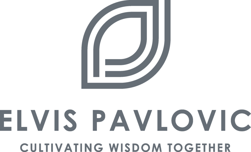 Elvis-Pavlovic-Logo-and-Tagline.png