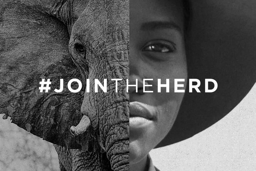WildAid #JoinTheHerd