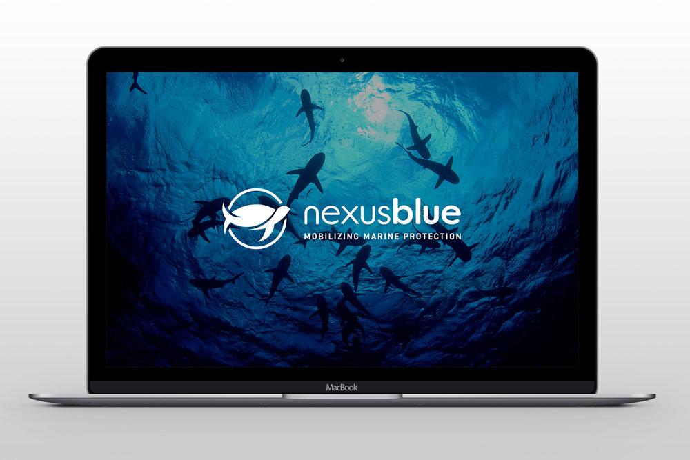 WildAid Nexus Blue<strong>Brand Development</strong>