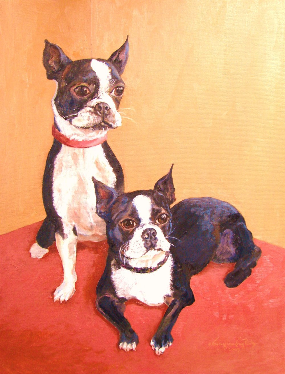 Two Boston Terriers A.JPG