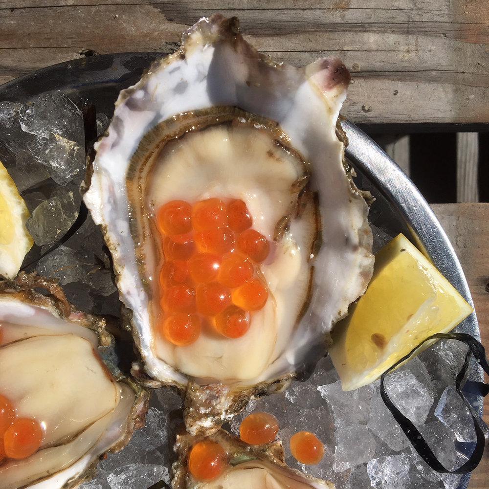 oysternsalmoneggs.jpg