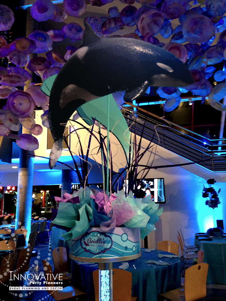 ArrielleAquarium_Cent Orca Whale.jpg