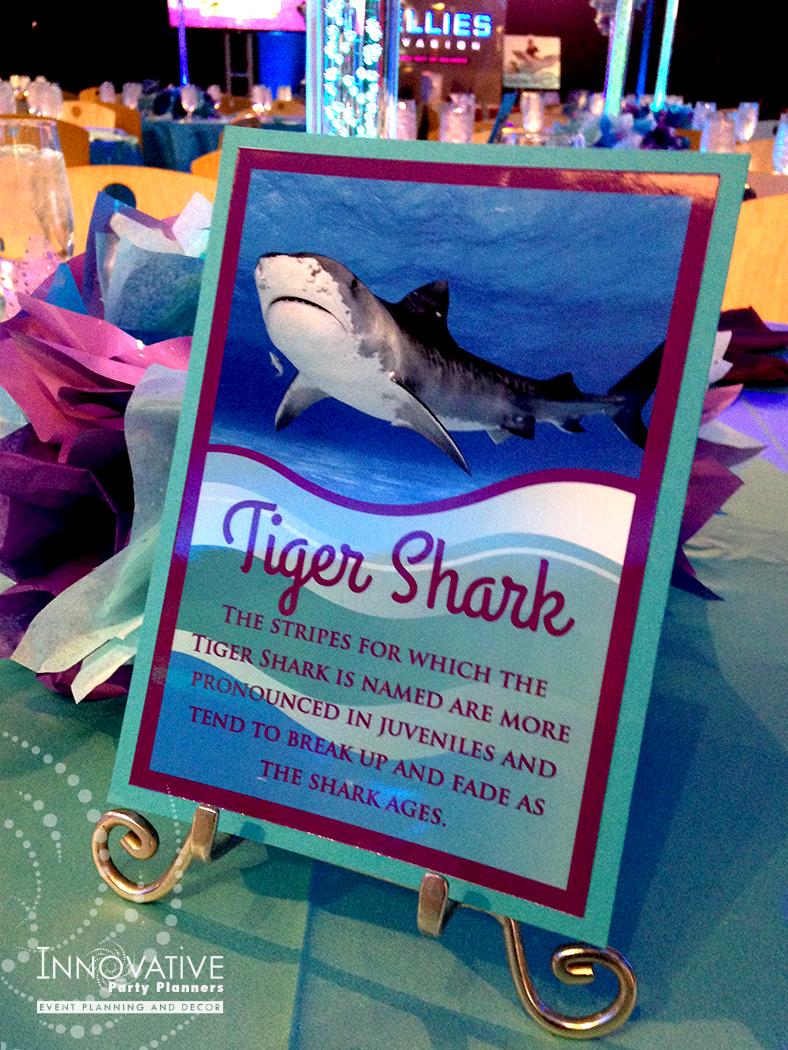 ArrielleAquarium_Tiger Shark_tble card.jpg
