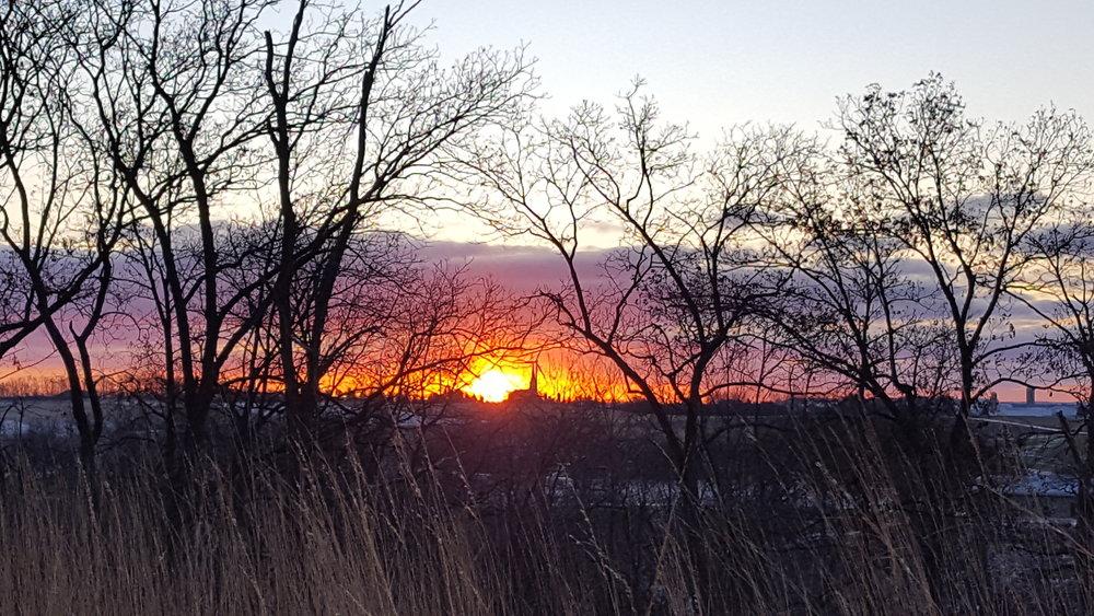 Sunrise Whippoorwill 12 12 17.jpg