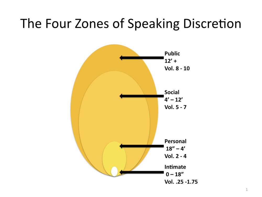 The Four Zones of Public Discretion.001.jpeg