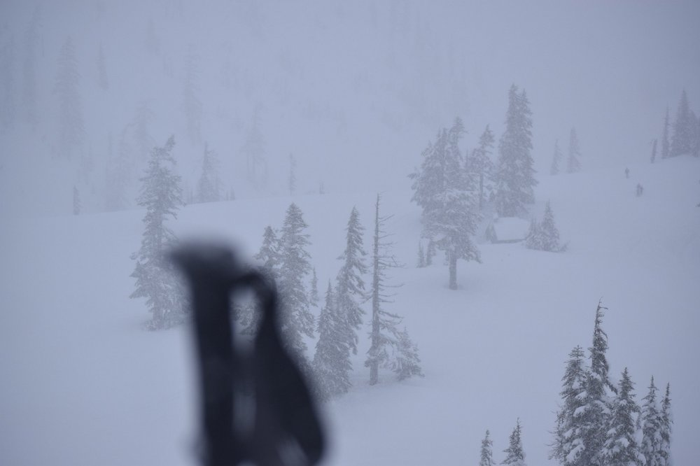 Visibility wasn't the best. The trees provided enough contrast to help stop me from walking in circles. Artist Point at Mt. Baker, Washington.