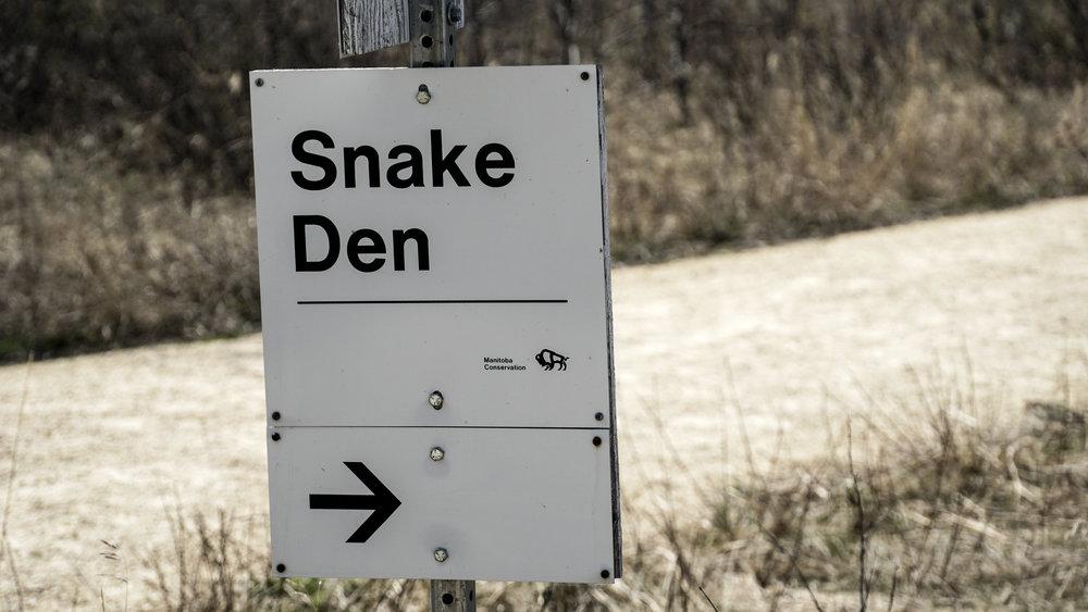 Narcisse Snake Pits | Manitoba Landmarks
