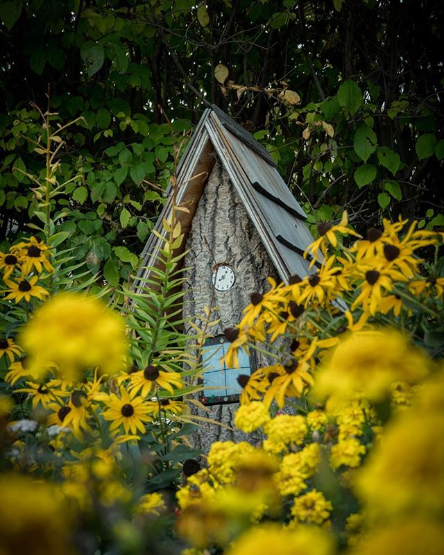 Hidden houses in Boissevain are an artists dream! Boissevain's outdoor gallery is a must see when traveling in western Manitoba. . . . @tourismwestman #hiddenhouses #fairygarden #exploremb #manitobaphotography