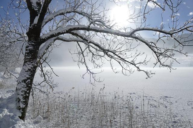 winter-3061397_640.jpg
