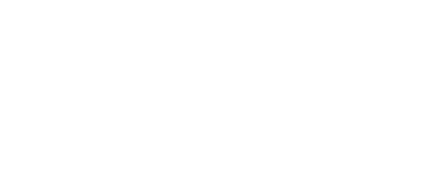 Anish Hotels Group