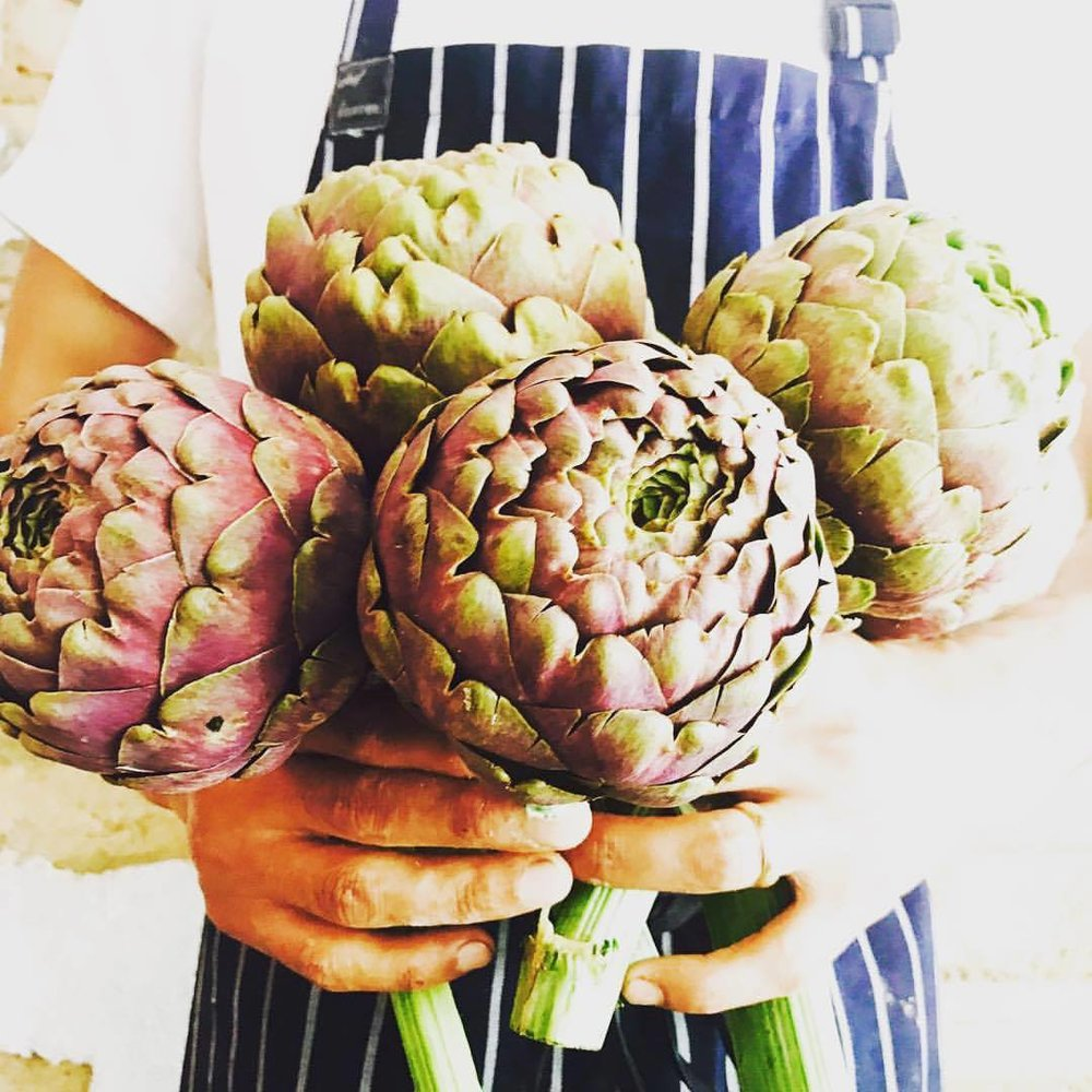 Artichokes for ravioli