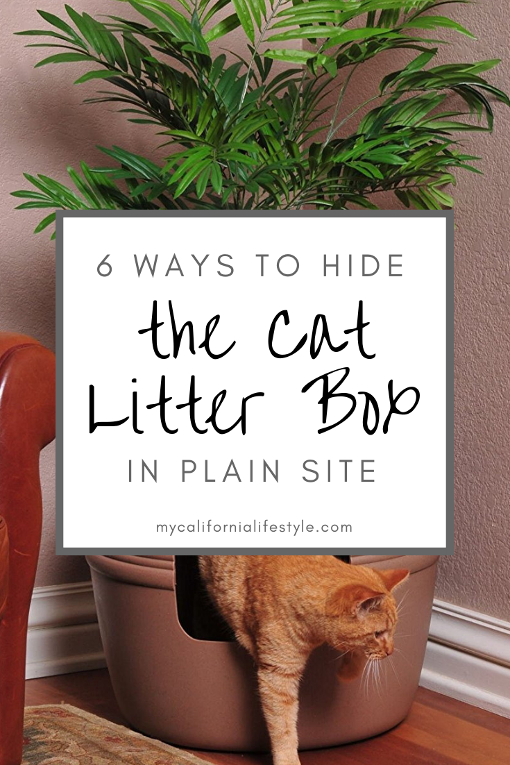 6 Ways To Hide The Litter Box In Plain Site My California Lifestyle