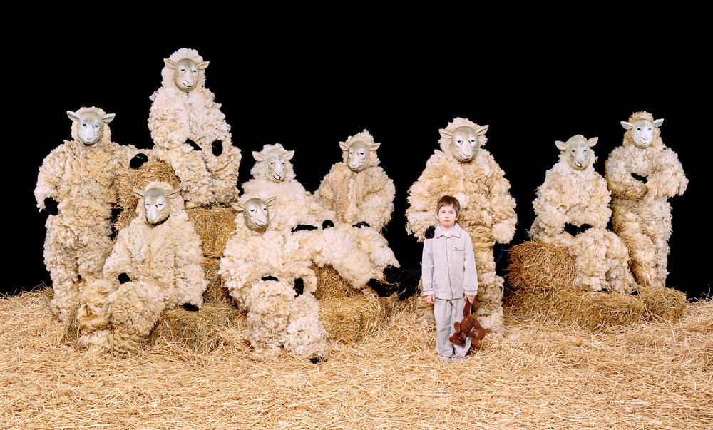 Sheep - Free