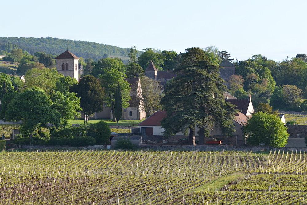 A view of our neighbour, Domaine Rousseau, and the Church St Aignan, at the top of Rue de l'Eglise. The Chateau de Gevrey in the background.