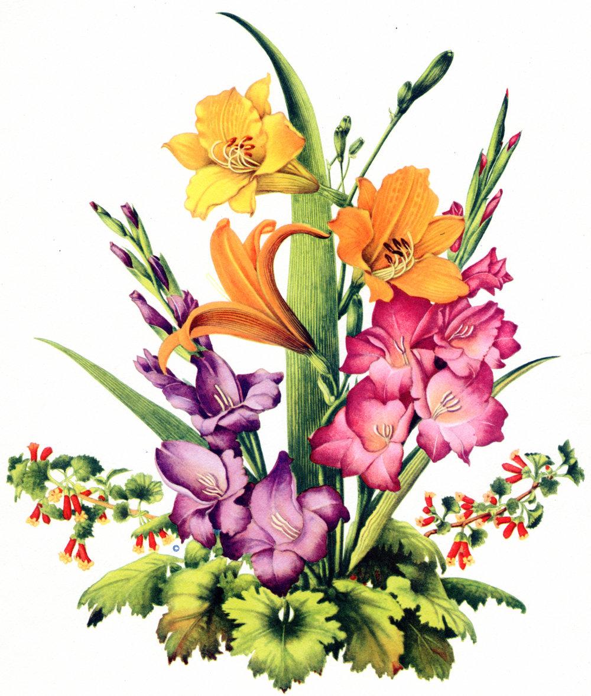 Vintage Floral lithographs