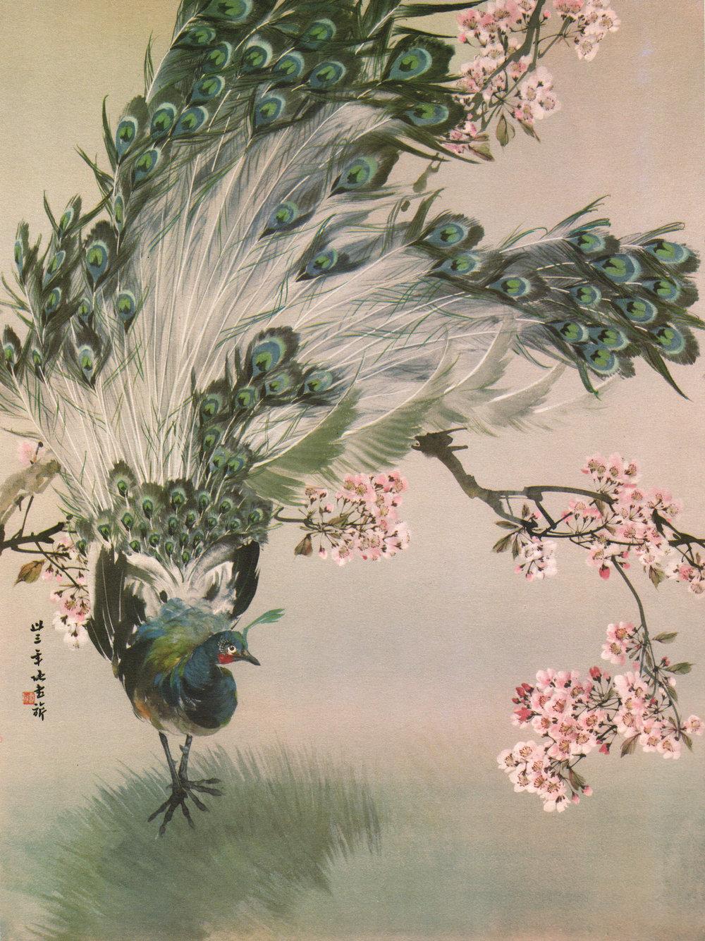 Vintage Japanese & Chinese bird art