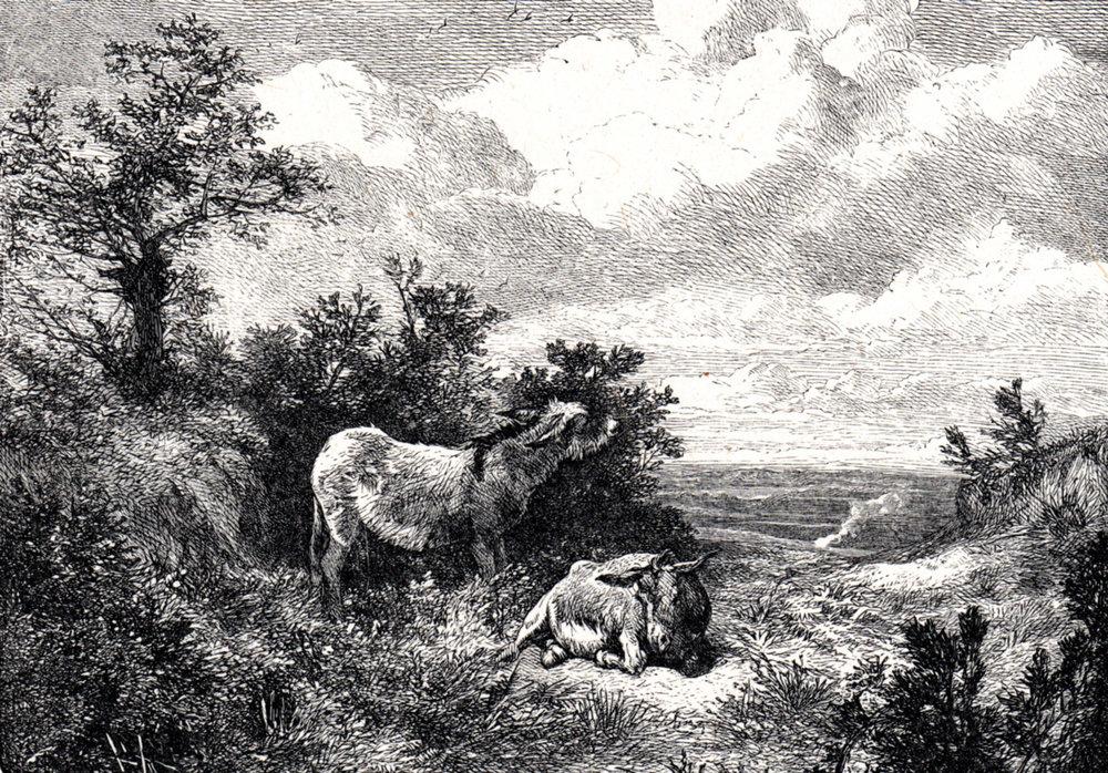 Foster, Myles Birket / English Landscape