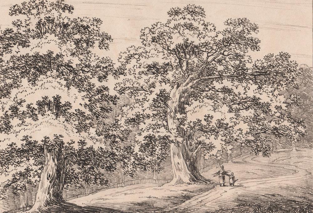 Wood, John George